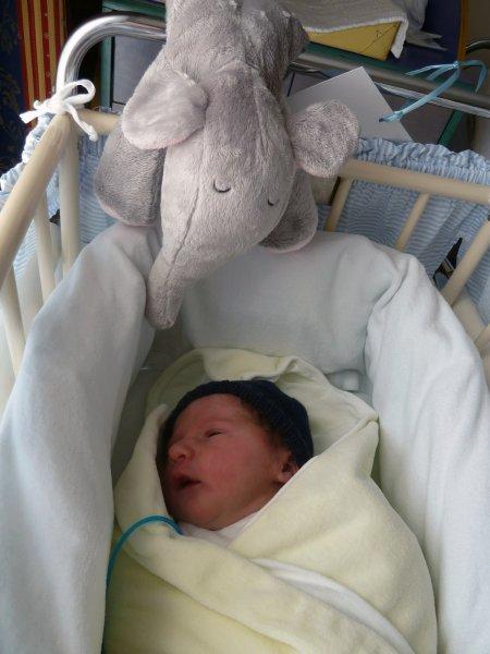 Mein Himmelbett und mein Kuschelelefant